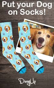 best 25 dog socks ideas on pinterest dog boots dog booties and