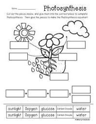 photosynthesis for kids photosynthesis printable worksheets and