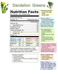 Dandelion Facts Delightful Dandelions Part 2 U2013the Greens Organic Foods Center