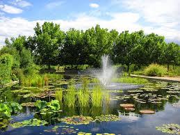 Colorado Botanical Gardens Denver Botanical Gardens Proflowers