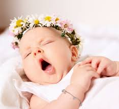 baby flowers flower names for baby that can blossom your feelings baby