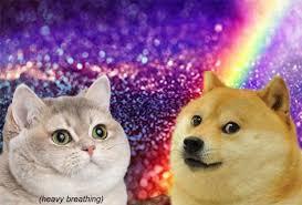 Meme Generator Doge - heavy breath cat doge blank template imgflip