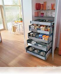 Spice Drawers Kitchen Cabinets by 20 Best Storage Ideas Images On Pinterest Home Kitchen And
