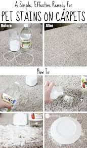 How To Wash Rugs At Home Best 25 Carpet Cleaners Ideas On Pinterest Homemade Carpet