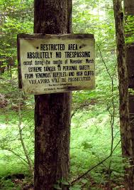 Vermont wild animals images Carnivorous wild animal best blog dangerous wild animals in vermont jpg