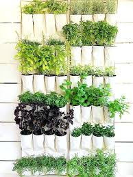 diy vertical herb garden vertical herb garden diy this simple inexpensive version of a