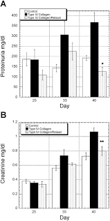 relaxin increases ubiquitin dependent degradation of fibronectin