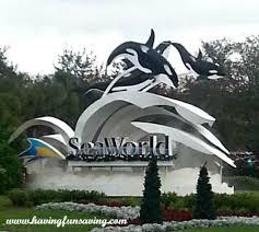 seaworld black friday deals orlando family fun