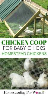 311 best chickens backyard images on pinterest keeping chickens