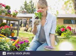 Flowers In Garden Woman Smelling Flower In Garden Stock Photo Royalty Free Image
