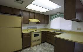 avocado green kitchen cabinets harvest gold avocado green ugly house photos