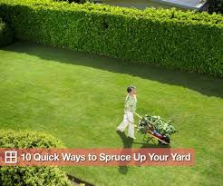 Landscaping Ideas Backyard On A Budget Quick Easy And Inexpensive Ways To Fix Up Your Yard Popsugar Home