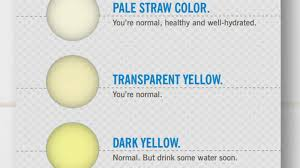 Light Brown Discharge After Period What The Color Of Your Says About Your Health