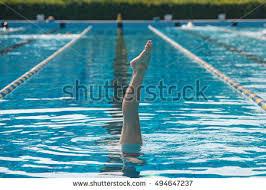 Inside Swimming Pool Synchronized Swimming Imágenes Pagas Y Sin Cargo Y Vectores En