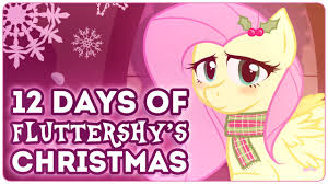12 days of fluttershy s 2013