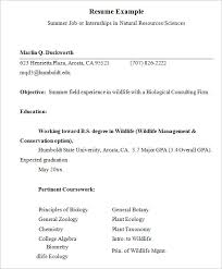 internship resume exles resume exle for internship musiccityspiritsandcocktail