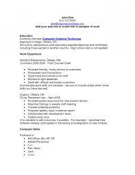 Resume Computer Skills Examples by Write Cv Computer Skills
