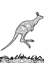 87 best coloring kangaroo ostrich images on pinterest coloring