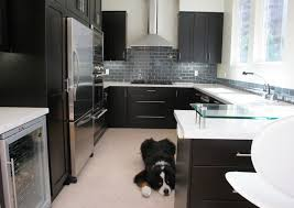 black glass backsplash kitchen 53 best glass the kitchen backsplash images on