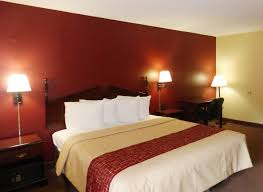 Red Roof Inn Lexington Ky South by Pets Stay Free At Red Roof Stay With Red Roof Pinterest Red