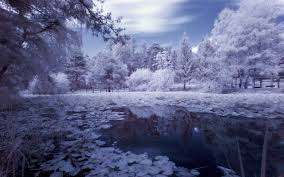 winter nature wallpapers winter snow winter forest beautiful garden lake scenery nature