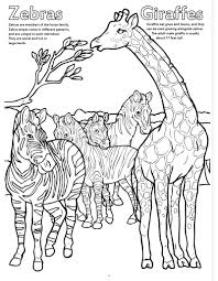 coloring books big book zoo animals zoo animal templates az