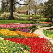 5 midwest spring flower festivals midwest living