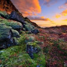36 best iceland autumn íslenskt haust images on