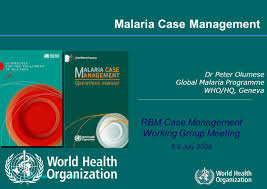 world health organization ppt video online download