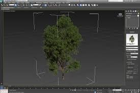 laubwerk plants kit 1 for 3ds max maya cinema 4d sketchup v ray
