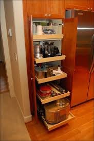 Pull Out Kitchen Shelves by Kitchen Kitchen Cabinet Slides Roll Out Cabinet Drawers Cabinet
