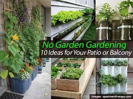 no garden gardening u2013 10 ideas for your patio or balcony