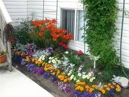 imagenes de jardines pequeños con flores flores bonitas que no deben faltar en el jardín jardines pequeños