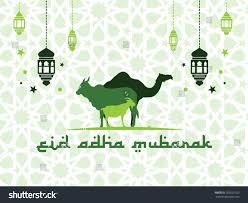 eid adha mubarak silhouette camel cow stock vector 703526923