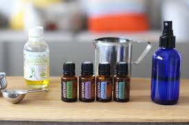 diy natural insect repellent u2013 the holistic ingredient