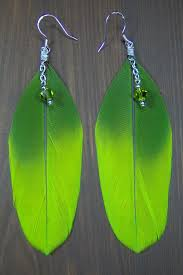feather earrings s 25 best parrot feather earrings images on feather