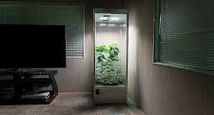 chambre culture cannabis complete chambre culture complete inspirational chambre de culture plete