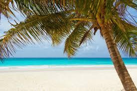 bird island belize rental exploring the top 5 belize islands american real estate