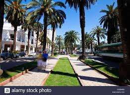 the boulevard de rachidi a typical wide tree lined in the