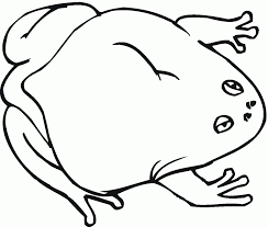 toad 9 coloring page download animal creative art of toads