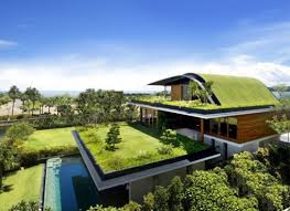 cool organic home design ideas in harmony with nature home