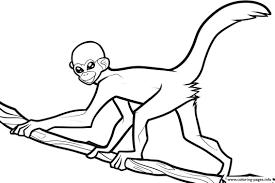 printable coloring pages monkeys monkey printable coloring pages with free printable monkey for kids