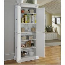 kitchen pantry closet design ideas kitchen storage ideas that will