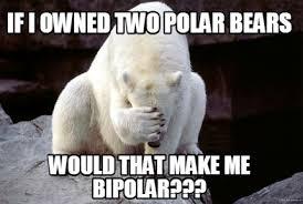 Bipolar Meme - meme creator if i owned two polar bears would that make me bipolar