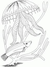 fish in ocean coloring pages other photos of ocean coloring