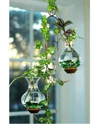 40 cool water beads ideas for home indoor plants decorations