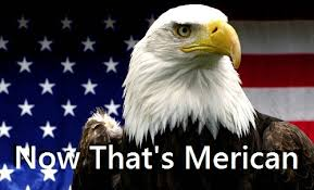 America Eagle Meme - american eagle now that s merican