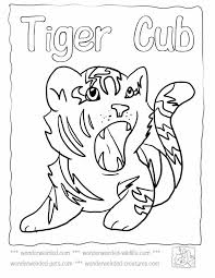tiger without stripes coloring page