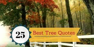 25 best tree quotes sayingimages com