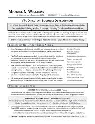 product development manager resume sample sample resume business development manager best resume example